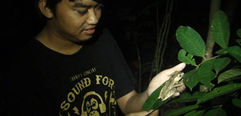 THE BIODIVERSITY OF LABANAN TROPICAL RAINFOREST